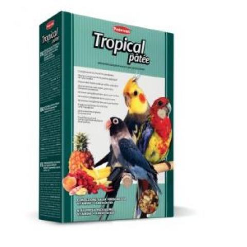 TROPICAL PATEE REF PP00197