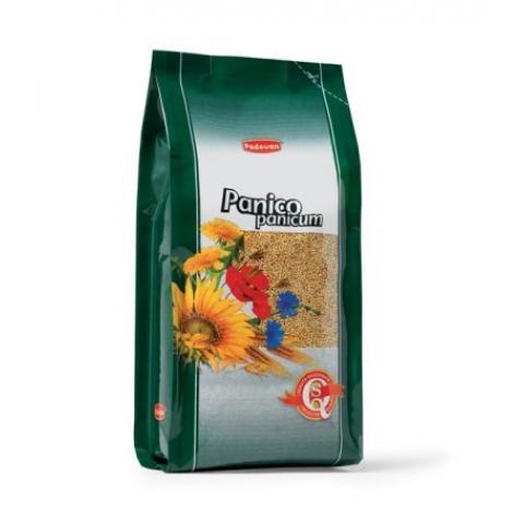 GRAINE DE PANICUM 1KG REF PP00323